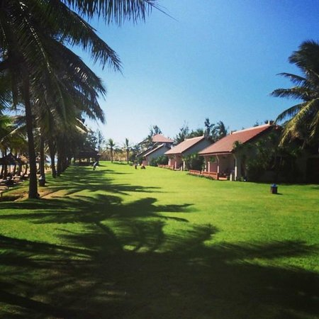 Palm Garden Beach Resort & Spa : Beach bungalows