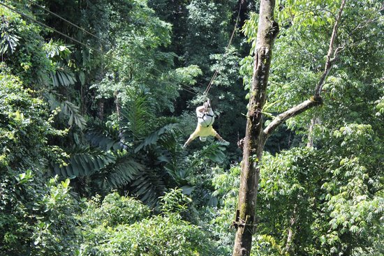 MidWorld Costa Rica: Hanging upside down - it was fun!