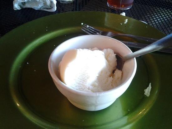 Adams Breezy Hill Farm: homemade Coconut Ice Cream