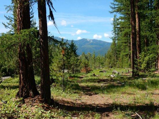 Three Bars Guest Ranch: Postcard scenery