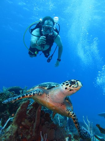 Gran Scuba Diving : Diving with Pepe in Cozumel