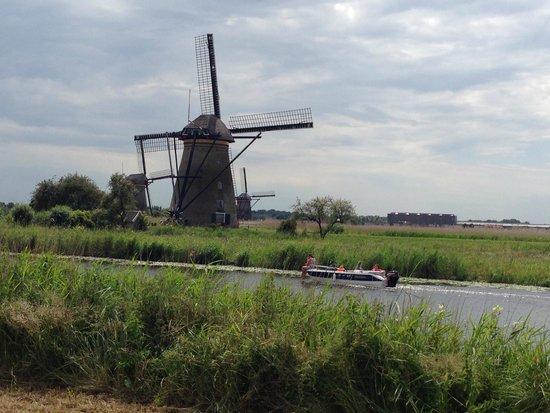 Réseau de moulins de Kinderdijk-Elshout : More windmill