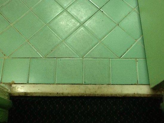 Desert Hills Motel : Bathroom floor