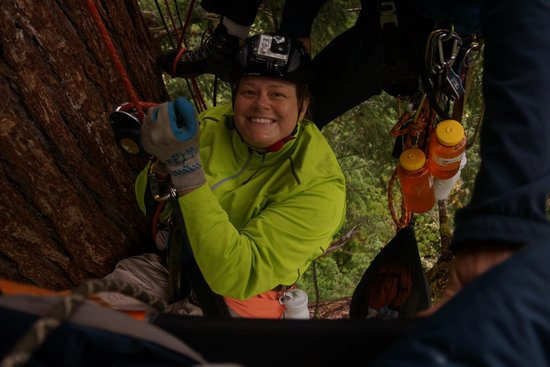 Pacific Tree Climbing Institute : Me- descending- see how happy I am.?  FUN!