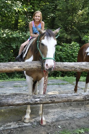 Sugarland Riding Stables: Horsey
