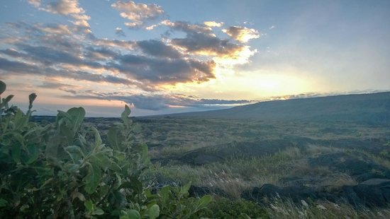 Hawaii Forest and Trail : A beautiful sunset over old lava fields after dinner on the coast!