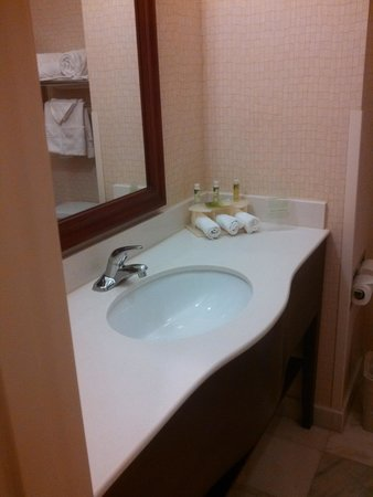 Holiday Inn Express Hotel & Suites Los Angeles Airport Hawthorne : Bathroom sink area