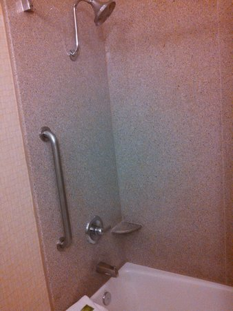 Holiday Inn Express Hotel & Suites Los Angeles Airport Hawthorne : Tub & Shower- looks dark but very clean