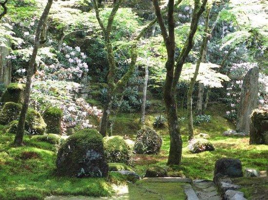 Komyozen-ji Temple : 枯山水の一滴海庭