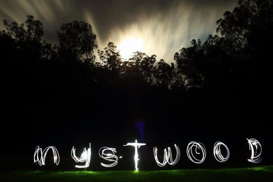Mystwood: Night time