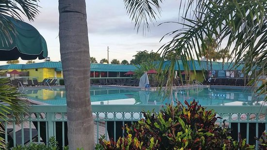 grounds picture of international palms resort. Black Bedroom Furniture Sets. Home Design Ideas