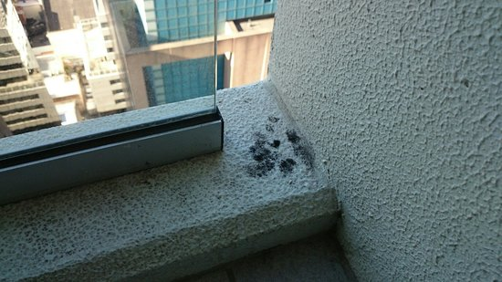 Oaks Charlotte Towers : Poor cleanliness