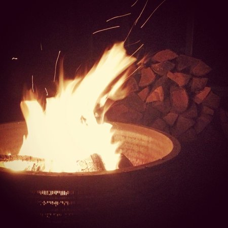 The Homestead Cabins : Fire pit with free firewood