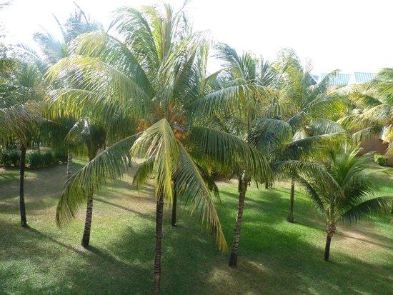Beachcomber Le Victoria Hotel : κηπος