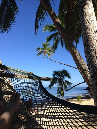 The Beachouse: Hammock City