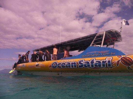 Ocean Safari: On the reef