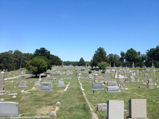 Blandford Church and Cemetery: Blandford Church cemetary