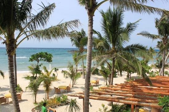 Malapascua Exotic Island Dive & Beach Resort: view fron beachfront deluxe