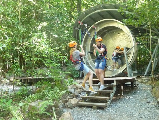 Jungle Surfing Canopy Tours: The hamster wheel moves participants up to the first level
