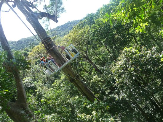 Jungle Surfing Canopy Tours: Quite a view!