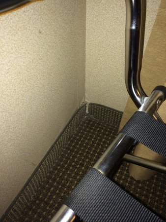 Homewood Suites by Hilton Albuquerque - Journal Center: Hole in wall where critters come in.