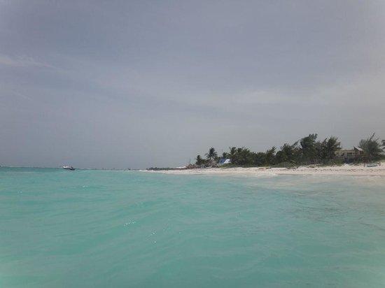 Catalonia Royal Tulum Beach & Spa Resort: beach