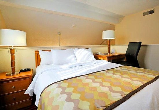Residence Inn Detroit Troy/Madison Heights: Loft Bedroom