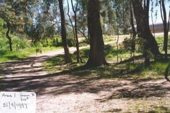 Kaluna Park