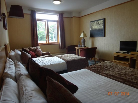 Tullamore Court Hotel: TCH room