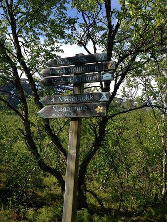 Abisko National Park Signs