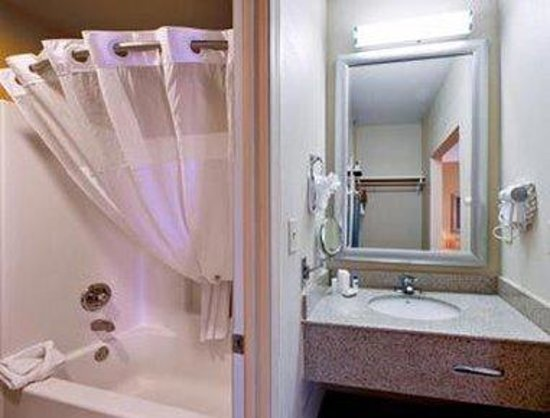 Hawthorn Suites by Wyndham Conyers: Bathroom