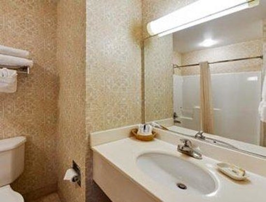 Hawthorn Suites by Wyndham Lancaster : Guest Bathroom