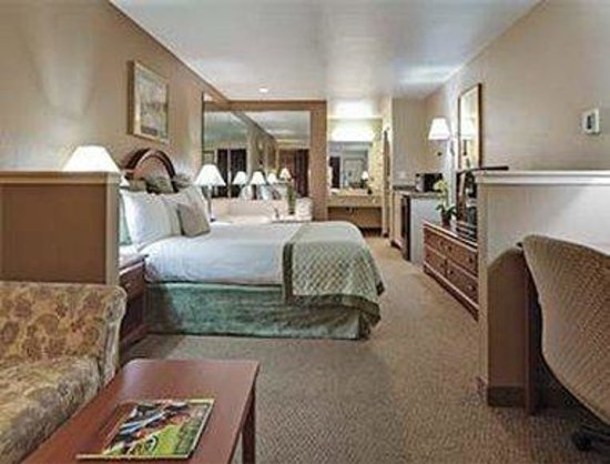 Hawthorn Suites by Wyndham Napa Valley: Deluxe Jauczzi Suite