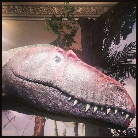 Rotunda Museum : Dinosaur
