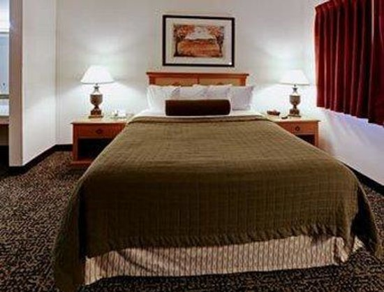 Hawthorn Suites by Wyndham Killeen/Ft. Hood: One Queen Bed Guest Room