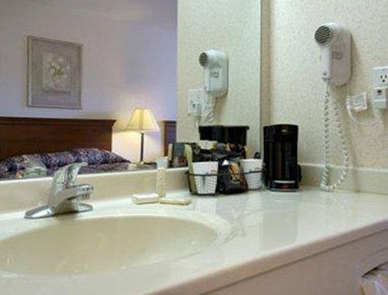 Baymont Inn & Suites Columbus/Rickenbacker : Bathroom