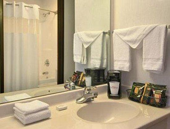 Baymont Inn & Suites Oxford: Bathroom
