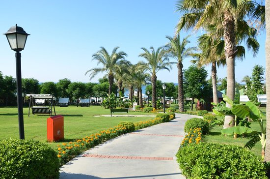 Alva Donna Beach Resort Comfort: территория