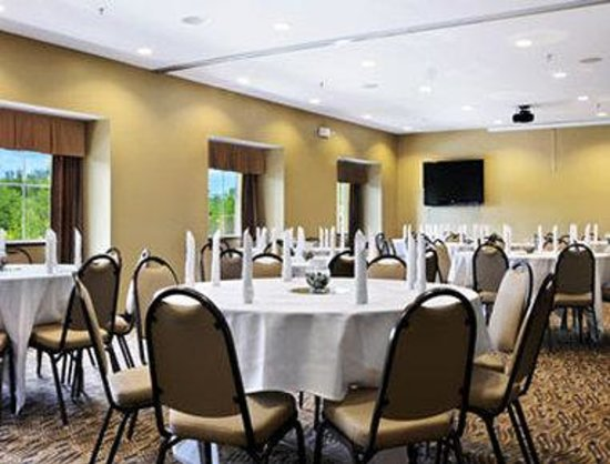 Microtel Inn & Suites by Wyndham Marietta: Meeting Room