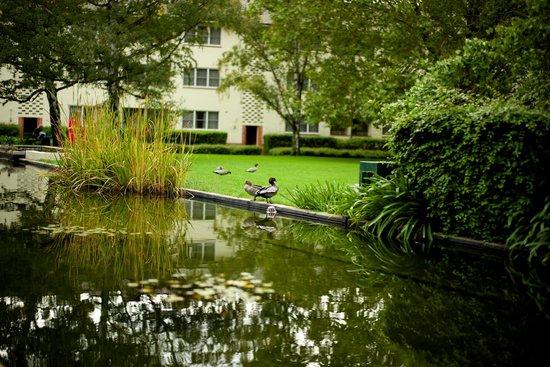 University House: Quadrangle