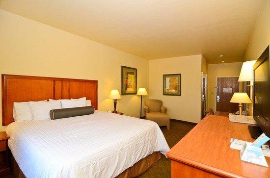 Best Western Plus Schulenburg Inn & Suites : King Guest Room
