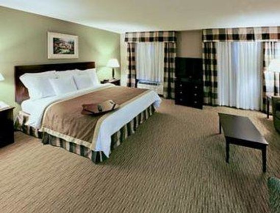 Hawthorn Suites by Wyndham Addison Galleria: King Bed Suite