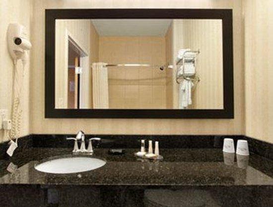 Baymont Inn & Suites Prince George at Fort Lee: Bathroom