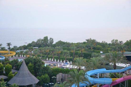 Alva Donna Beach Resort Comfort: вид из номера в 6 утра