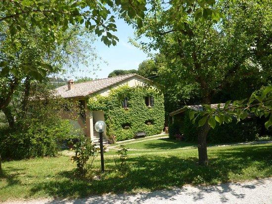 Agriturismo Nobile: Дом увитый плющём