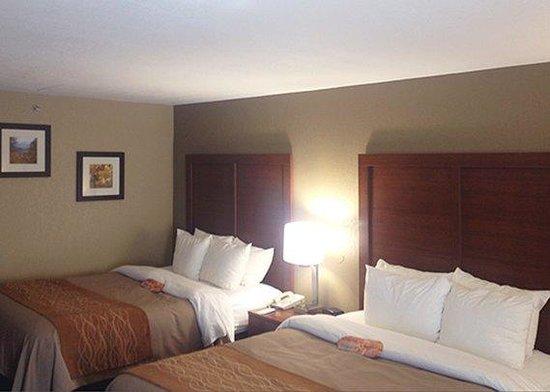 Comfort Inn Biltmore West : Room
