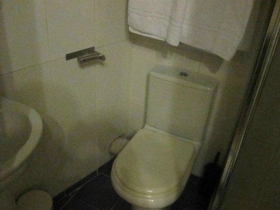 Falcon Hotel : Tiny bathroom