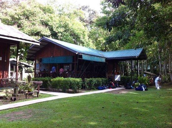 Nature Lodge Kinabatangan: Reception