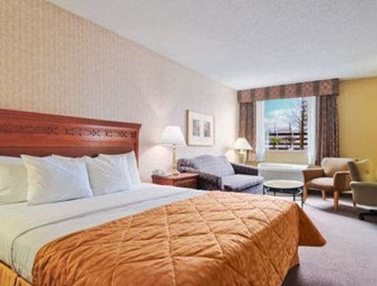 Gateway Hotel Dallas: Standard One King Bed Room