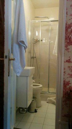 Manoir de Beauregard : bathroom